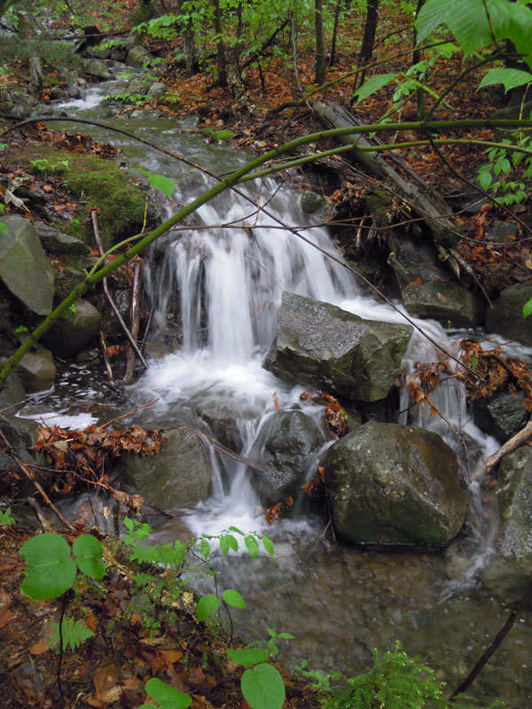 Beautiful contrasts from the leaves to the dark wet stones with a highlight of white water, as cold as ice.