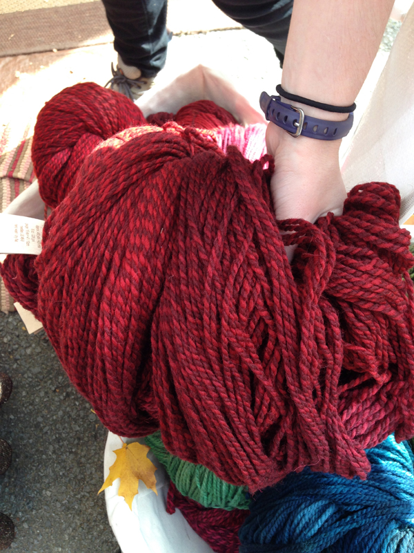 Gorgeous hand dyed yarn from Briar Rose Fibers.